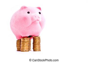 argent, cochon