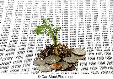 argent, concept, croissance