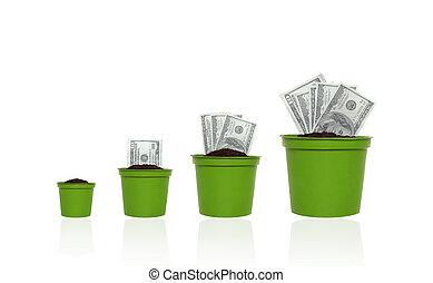 argent, croissance, concept