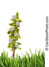 argent, croissant, sur, arbre, à, herbe verte