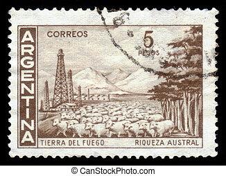 landscape of the Tierra del Fuego