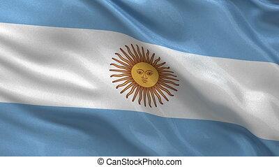 Argentina flag seamless loop