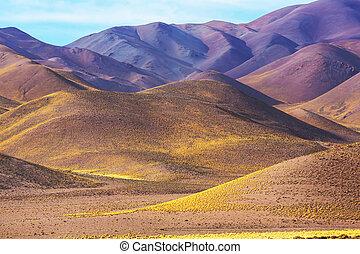 Argentina, norteño