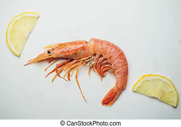 Cooking Ingredient Series Argentine Red Shrimp For Adv Etc Of
