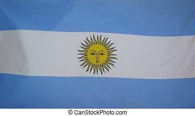 argentinië vlag, echte, weefsel, afsluiten, 4k