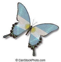 argentinien kennzeichen, auf, papillon
