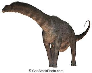 Argentinosaurus over White