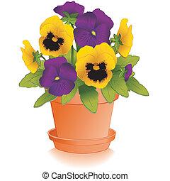argile, pensées, pourpre, pot fleurs