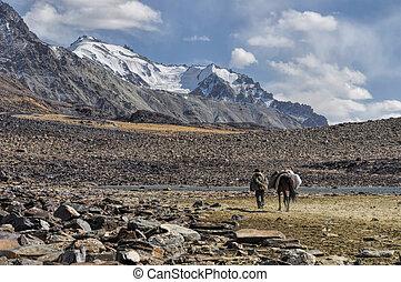 Arid valley in Tajikistan - Picturesque rocky valley in...