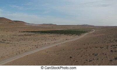 ariel, aanzicht, van, de, negev woestijn, landbouw, in, israël
