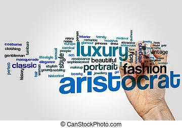 Aristocrat word cloud concept on grey background