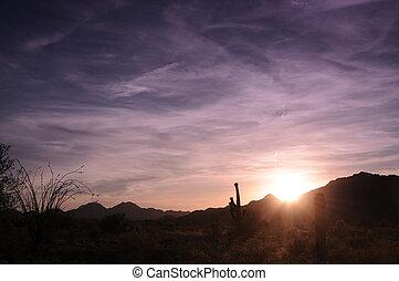 arizona, amanhecer