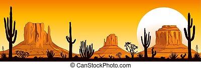 arizona, coucher soleil, désert