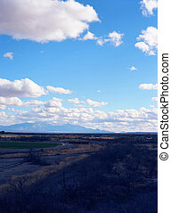 Arizona Desert Farms
