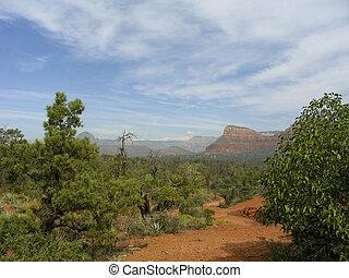 Arizona desert path with mountain background