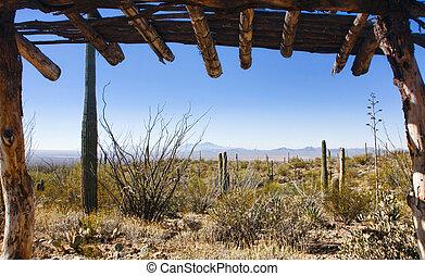 Arizona Desert View at the Arizona Sonora Desert Museuem