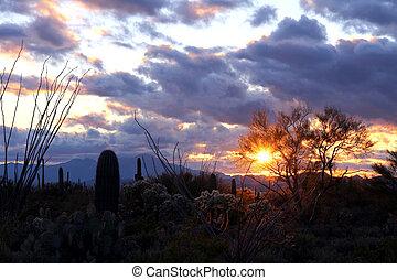 arizona, deserto, pôr do sol