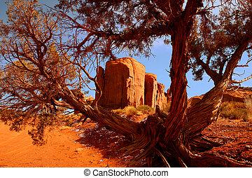 arizona, immagine, incorniciato, valler, monumento, paesaggio