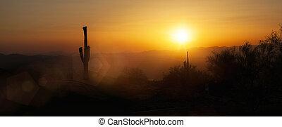 arizona phoenix, contorno, ocaso, horizontal, bandera