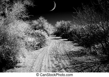 Arizona Sonora Desert road with Moon in infrared monochrome