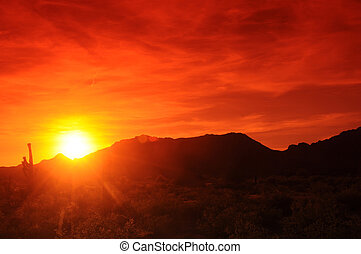Red sunset in central Arizona with saguaro in foreground