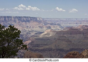 The beauty of Grand Canyon