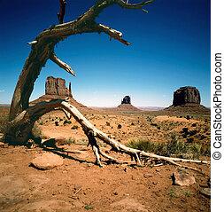 arizona, vale, monumento