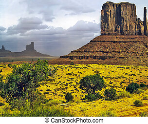 arizona, Valle, monumento