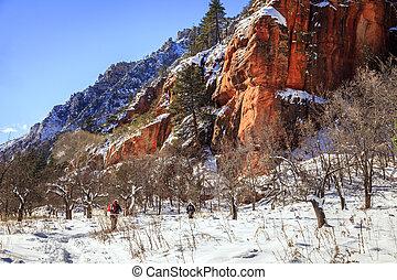 arizona, winter, wandelende
