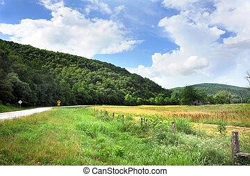 Arkansas Byway and Barn