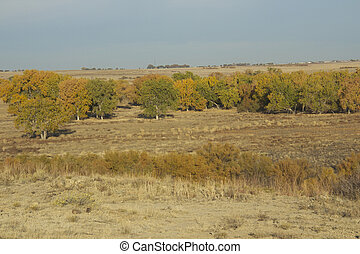 Arkansas River Valley in Fall - a scenic landscape along the...
