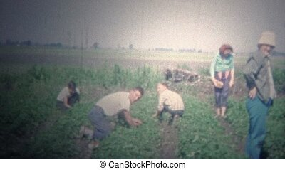 ARKANSAS, USA - 1965: Family hand - Original vintage 8mm...