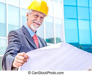 arkitekt, tittande vid, blåkopia
