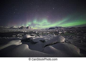 arktisch, nördliche lichter, landschaftsbild