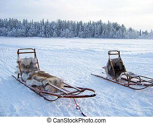 arktisch, schlitten