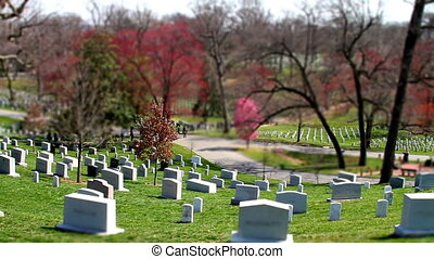 Arlington Cemetery tilt shift - Arlington National Cemetery...