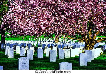 arlington cemitério nacional