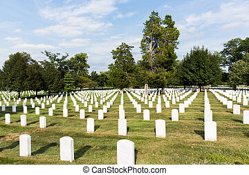 arlington national cemetery - headstones in arlington...