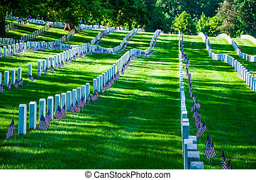 Arlington National Cemetery near to Washington DC, in Summer...