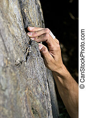 climbing on granite - Arm of a man climbing on granite,...