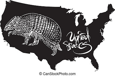 Armadillo and U.S. outline map. Black and white vector ...