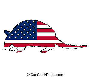 Armadillo United States of America