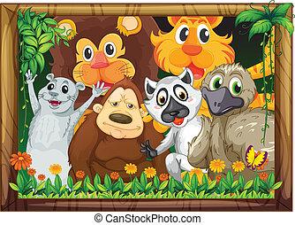 armature bois, animaux