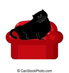 armchair., coccolare, gatto grasso, nero, casa, sedia, rosso