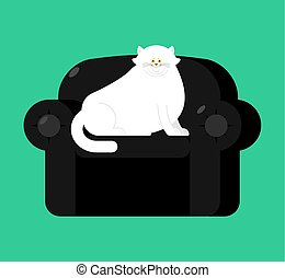 armchair., haustier, groß, dick, dicke katze, schwarz, stuhl, weich, weißes