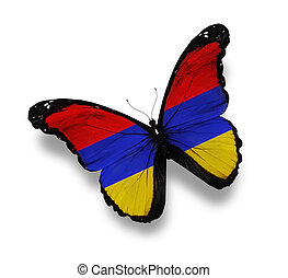 Armenian flag butterfly, isolated on white