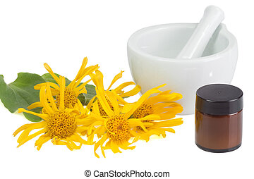 Arnica ointment - Arnica blossoms with mortar and pot with...
