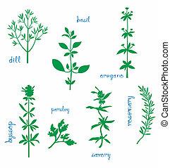 aromático, ervas