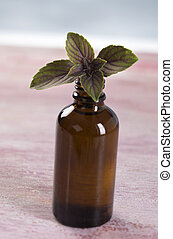 Aromatherapy - Basil essential oil bottle