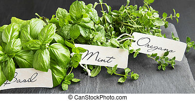 Aromatic herbs bunch , basil, mint and oregano with labels